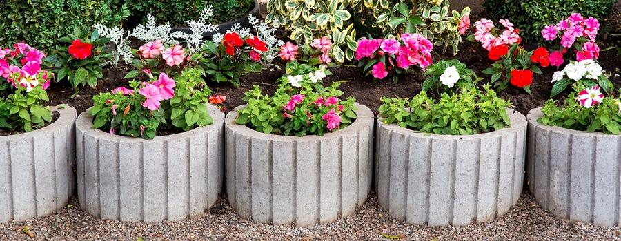 Flowers in flower pots